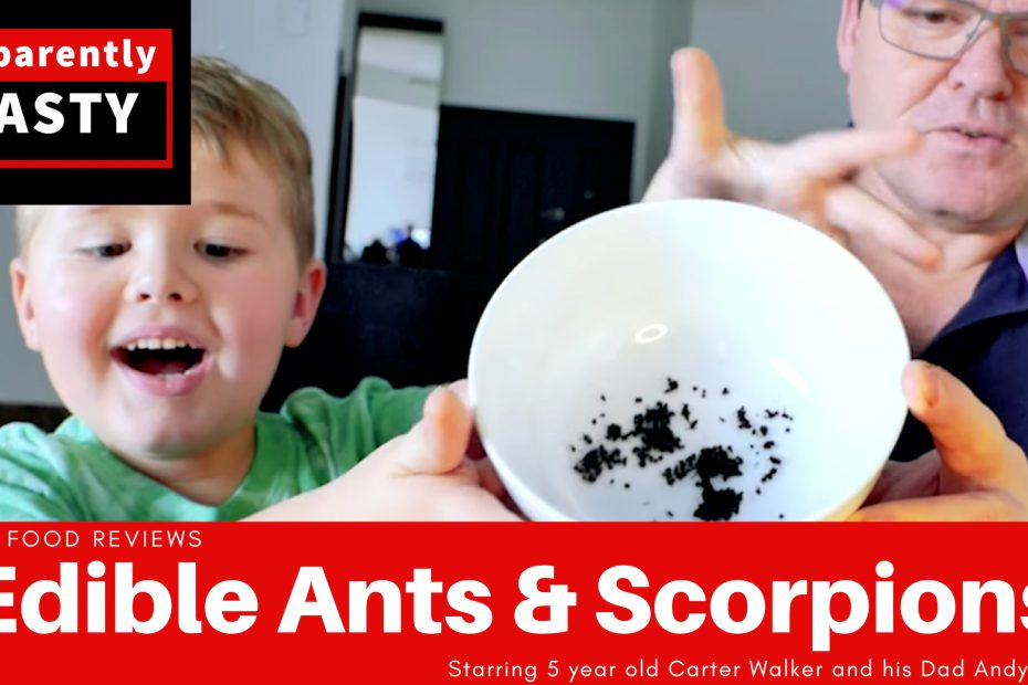 Edible ants and scorpions